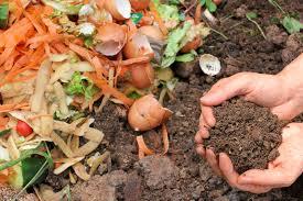 El Compost: Elaboración artesanal