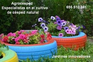Jardines innovadores con césped natural