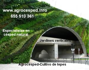 Espacios verdes con jardines verticales