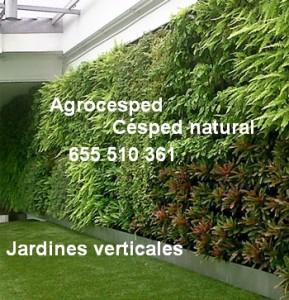 Jardines verticales-Agrocesped.info